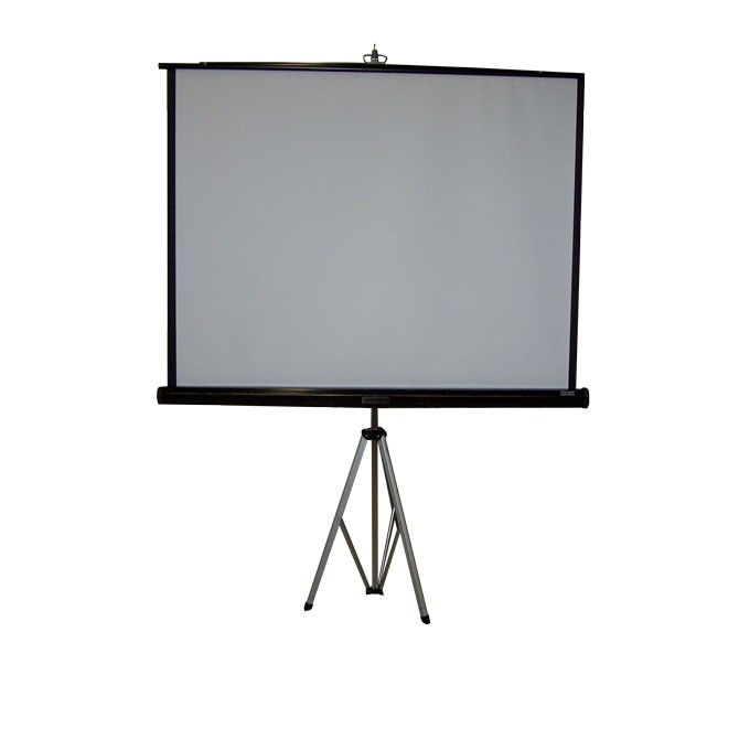 Projection screen (5' x 5')